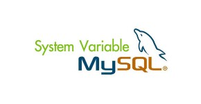 system-variable-mysql