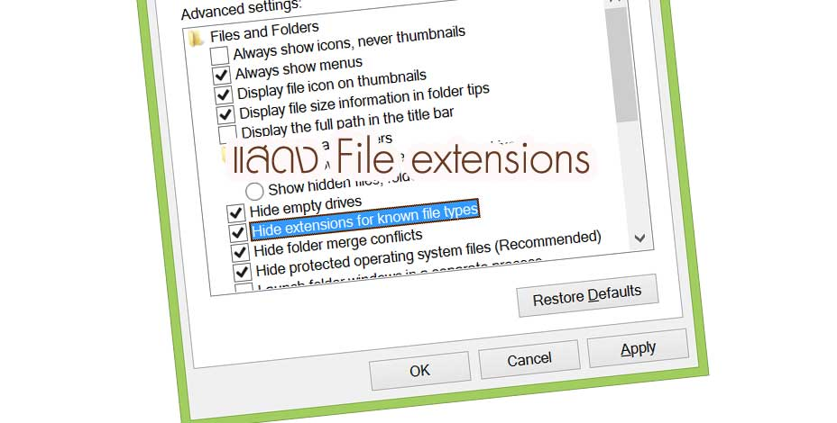 hild show file extensions