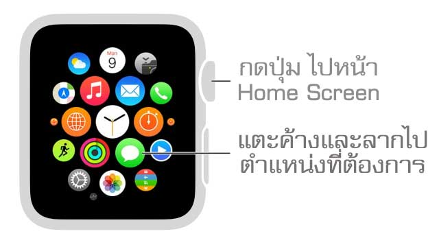 organize apps Apple Watch